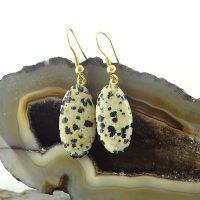 خرید گوشواره سنگ دالماتیان کد ۶۹ در فروشگاه اینترنتی پوشاکچی-مشاهده قیمت و مشخصات