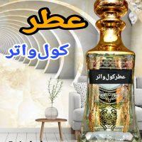 خرید عطر مردانه کول واتر دیویدف در فروشگاه اینترنتی پوشاکچی-مشاهده قیمت و مشخصات