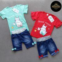 خرید ست تیشرت و شلوارک طرح لی کد 17409 در فروشگاه اینترنتی پوشاکچی-مشاهده قیمت و مشخصات